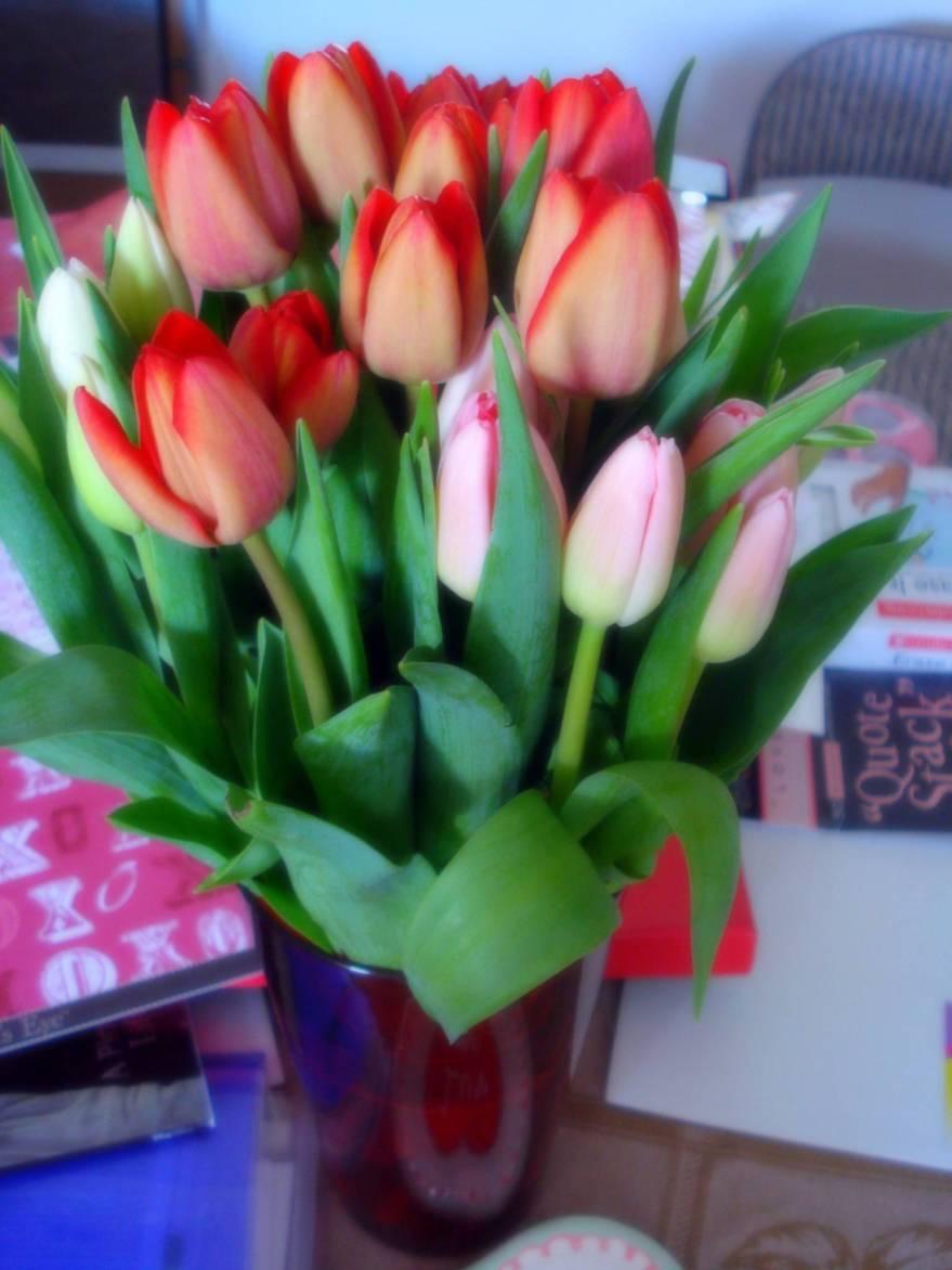 my-v-day-flowers.jpg