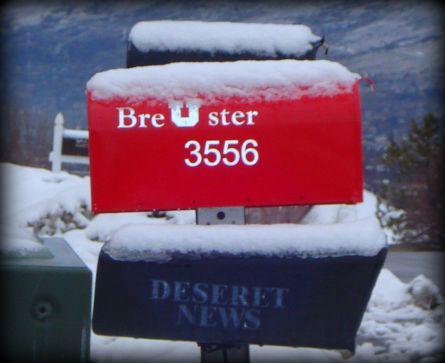 the-ute-mailbox.jpg